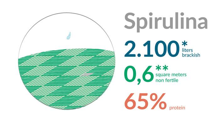 infografica_01a